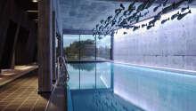 Indendørs moderne swimmingpool med udsigt.