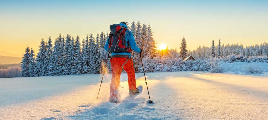 Åk på ett äkta vinteräventyr med snöskor i Nationalparken Hohe Tauern.