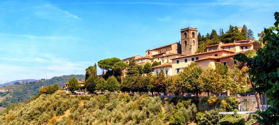 Hotellet ligger i hjertet av Montecatini Terme, som er kjent for sine termiske kilder og moderne spa-fasiliteter.
