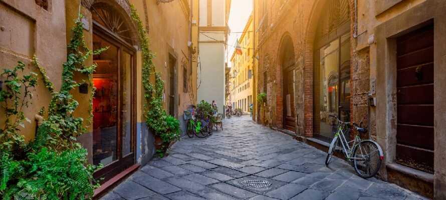 Ta en promenad genom de historiska gatorna, gränderna och parkerna i självaste Puccinis födelseort: charmiga Lucca.