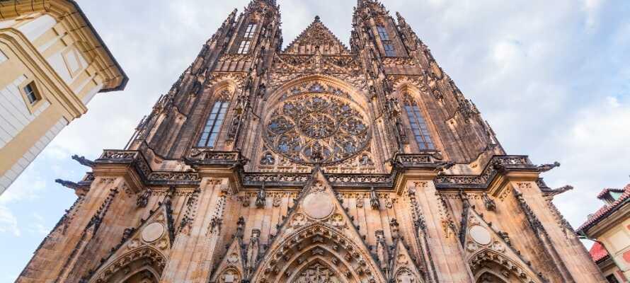 Opplev den storslåtte St. Vitus-katedralen, hvis historie går tilbake til det 9. århundre, og fra toppen har dere en fantastisk utsikt over Praha.