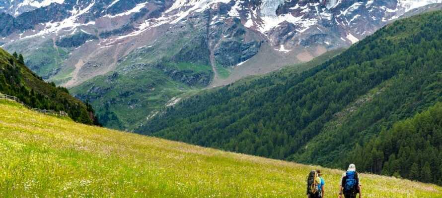 Det finns så mycket som 1000 km långa vandringsleder i området så ni kan uppleva den fina naturen.