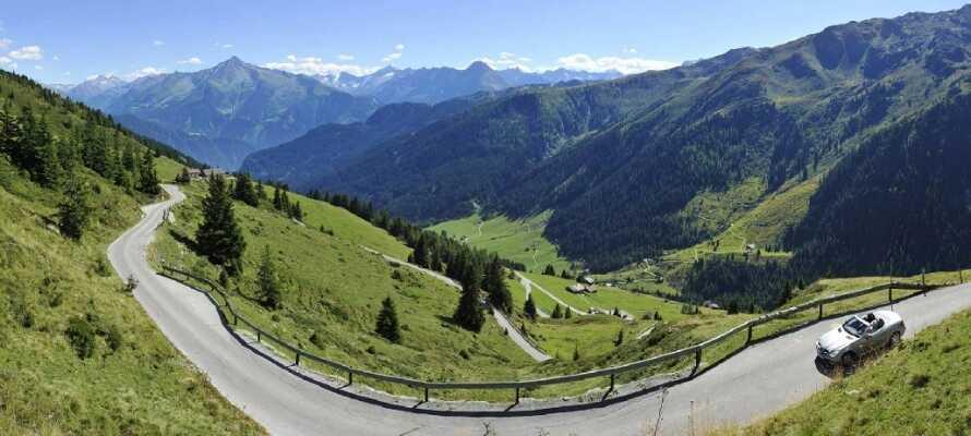 Udforsk den fantastiske natur i området, f.eks. med en køretur gennem landskabet, på den smukke alpevej, Zillertal Straße.