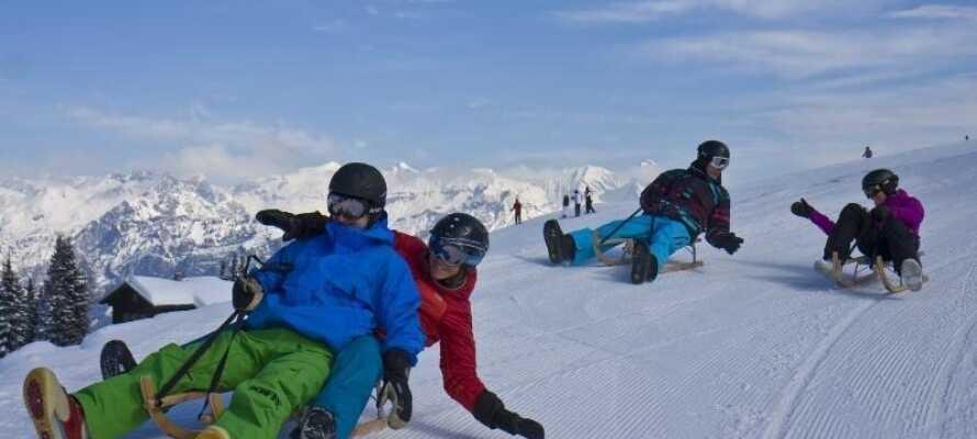 Skidområdet erbjuder en lång rodelbana, en rolig upplevelse för både barn och vuxna
