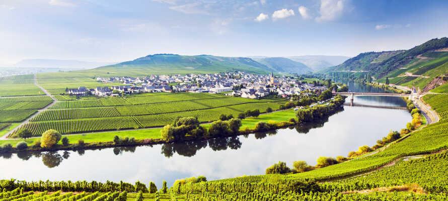 Lad jer fortrylle af Moseldalens skønhed og oplev en helt fantastisk ferie direkte ved Mosel-floden.
