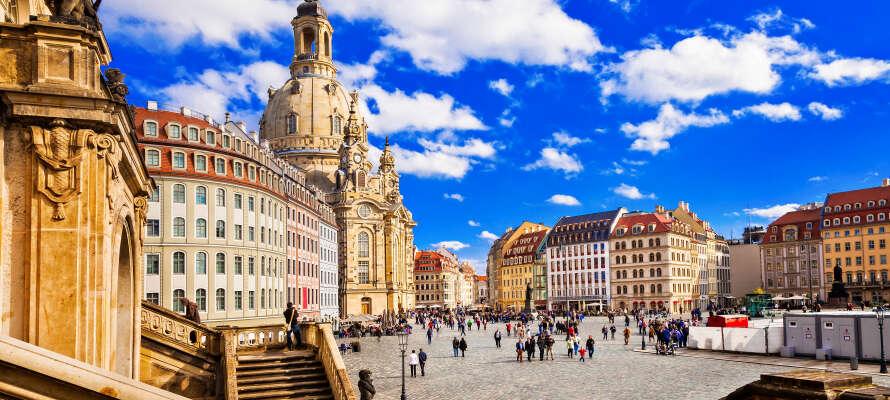 Dresden ist voller Erlebnisse für Jung und Alt. In einzigartiger Umgebung verbindet sich hier Geschichte mit Kultur und  Atmosphäre.