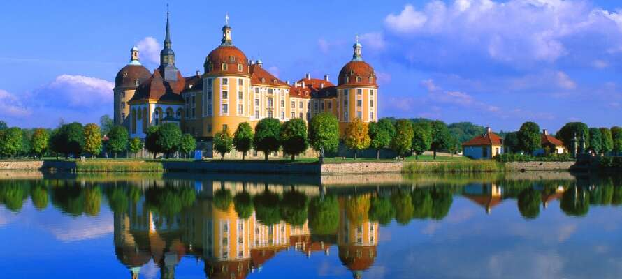 Mit ihrer herrlichen Architektur aus dem 16. Jahrhundert gehört die Moritzburg zu den populärsten Ausflugszielen.