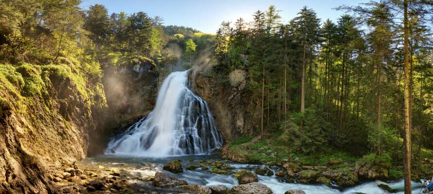 Innerhalb kurzer Entfernungen vom Hotel befinden sich verschiedene bedeutende Sehenswürdigkeiten: erleben Sie beispielsweise den schönen Gollinger Wasserfall.