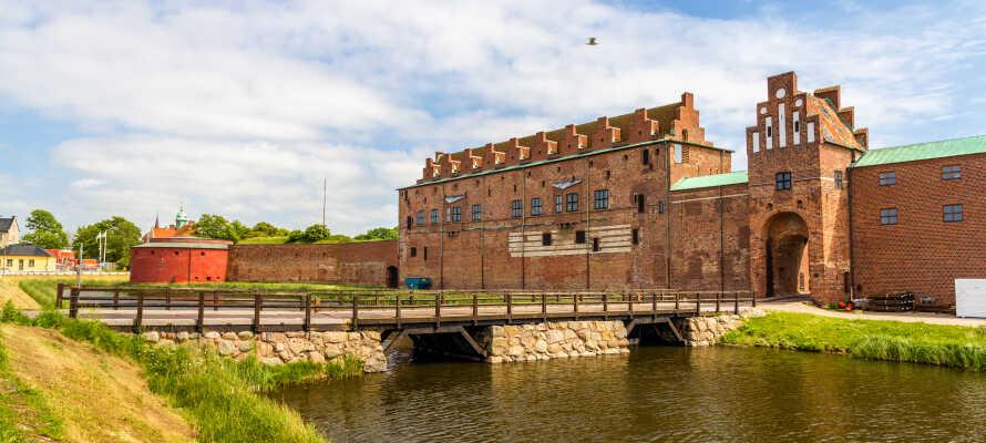 Besøk en av Nordens best bevarte renessanseslott, Malmøhus, som rommer et spennende kunstmuseum.