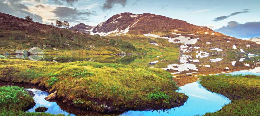 Hier können Sie Norwegens größten Nationalpark, die Hardangervidda, erleben - vielleicht in einem Wanderurlaub?