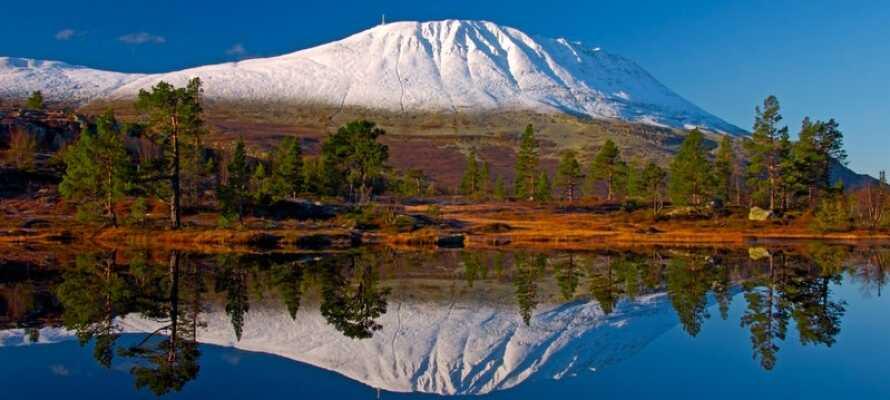 Opplev det 1883 meter høye fjellet, Gaustatoppen. Snør turskoene eller ta Gaustabanen opp på toppen på bare 15 minutter.