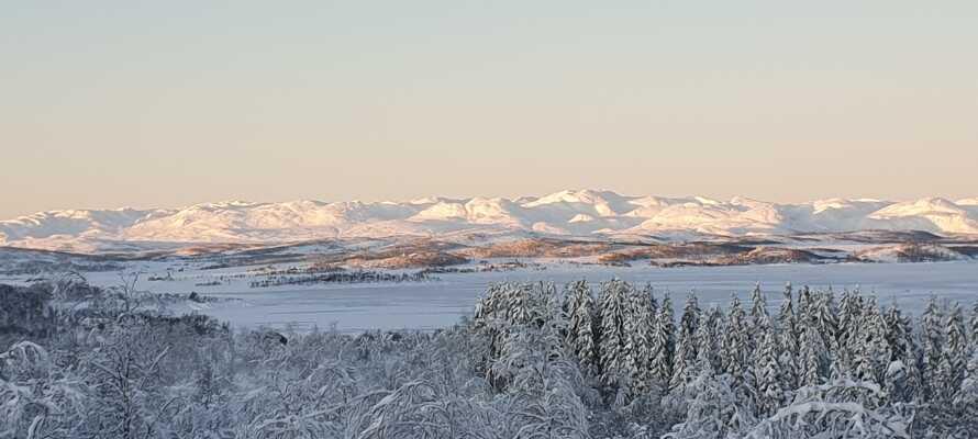 In der Umgebung gibt es wunderschöne Aussichten, wie zum Beispiel den Blick auf den Raulandsfjell.
