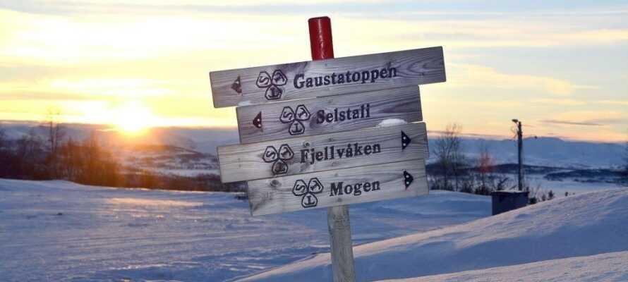 Området har flera vandringsleder som kan brukas under vintertid med snöskor.