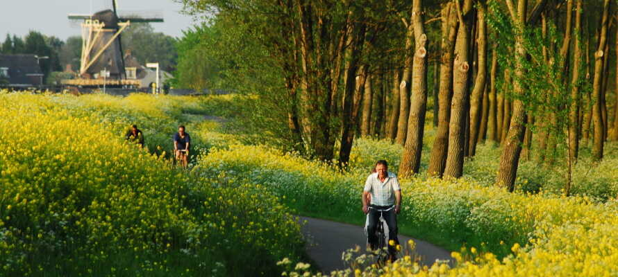 Die schöne Umgebung und Natur um Oranjewoud ist für Wander- oder Fahrradtouren perfekt.