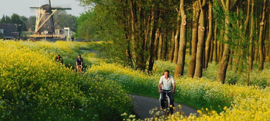Det vakre området og den slående naturen rundt Oranjewoud er helt ideell til gå- og sykkelturer.