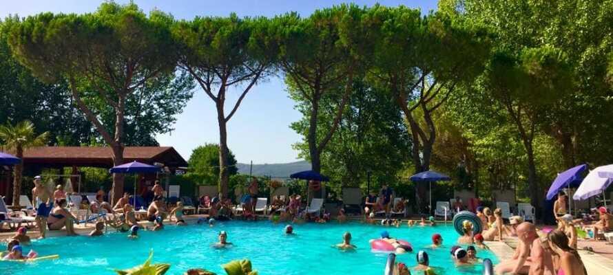 På campingpladsen er der adgang til pool og I kan også bade i søen og nyde det gode vejr på stranden