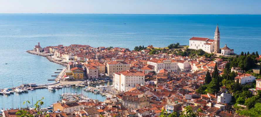 I Piran kan ni uppleva vackra, historiska byggnader, liksom Medelhavets skönhet.