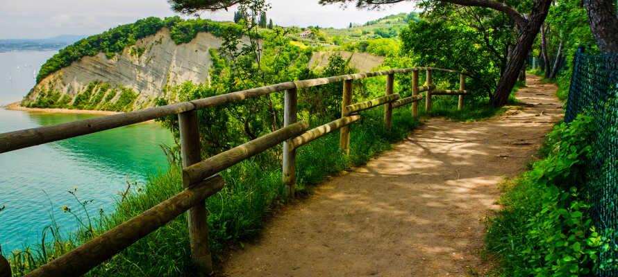 Det vakre området rundt Portoroz innbyr til utendørsaktiviteter. Nyt det vakre landskapet ved å sykle, gå eller dyppe tærne i det krystallklare blå vannet.
