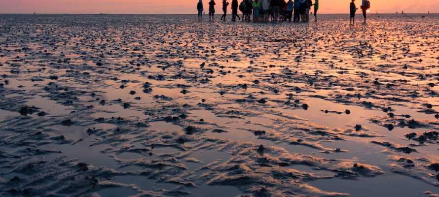 Nur eine kurze Autofahrt entfernt finden Sie das beeindruckende Wattenmeer, das weltweit einzigartig ist.