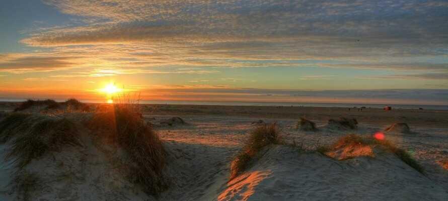 Europas breitesten Strand finden Sie auf Rømø - ein Paradies!