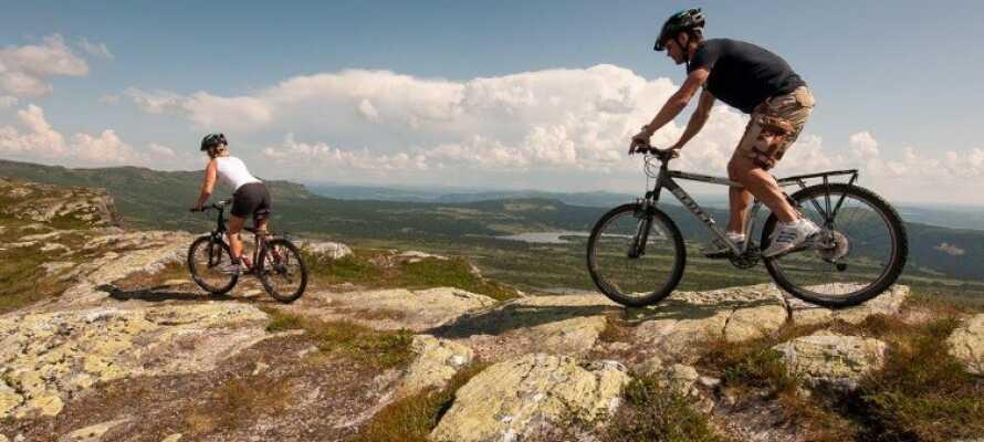 På sommaren erbjuds flera vandringsleder av varierande svårighetsgrad och längd samt golf och tennis.