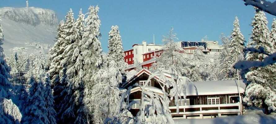 Thon Hotel Skeikampen ligger 40 km norr om Lillehammer och erbjuder en bra utgångspunkt för er vintersemester.