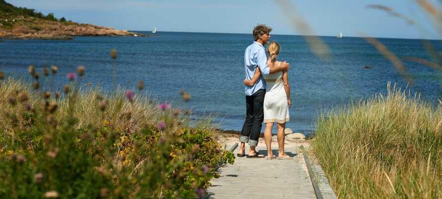 Fra hotellet er der hverken langt til Hejls Nor eller Lillebælt, hvor naturen omkring er ideel til dejlige vandreture.