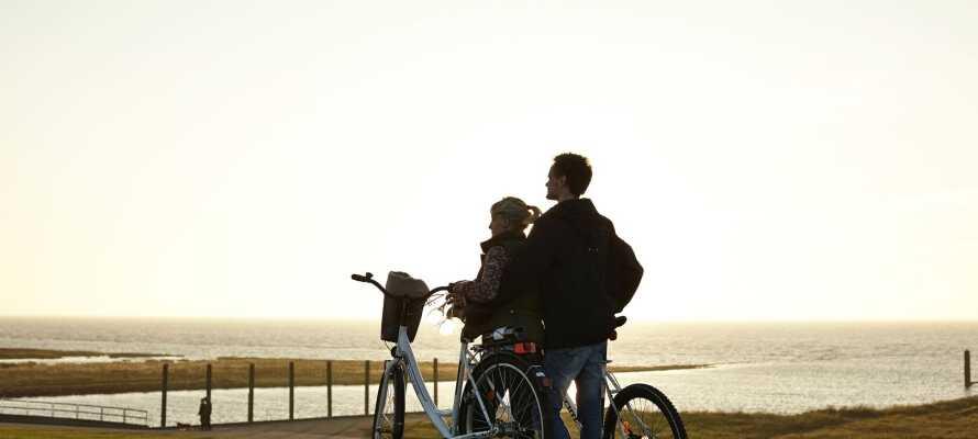 Nærområdet er preget av fantastisk natur, som innbyr til vandre- og sykkelturer.