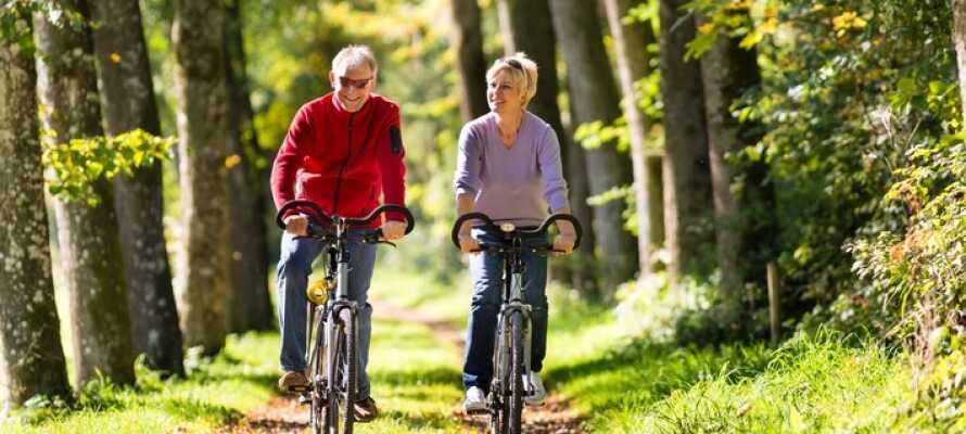 Den dejlige jyske natur er som skræddersyet til hyggelige vandre- og cykelture.