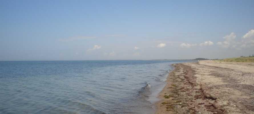 De skønne sandstrande ved Kramnitse er meget besøgte om sommeren.