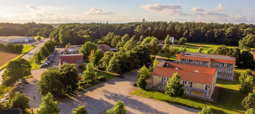 På Fjelsted Skov Hotel er naturen og beliggenheten det viktigste, med skog, innsjø og dyr på området.