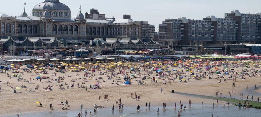 Ta en tur til Den Haag, hvor dere kan finne kulturelle opplevelser, men også en fin og populær badestrand.