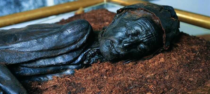 Besuchen Sie das Silkeborg Museum, wo Sie mehr über das Schicksal des Tollund-Mannes lernen können.