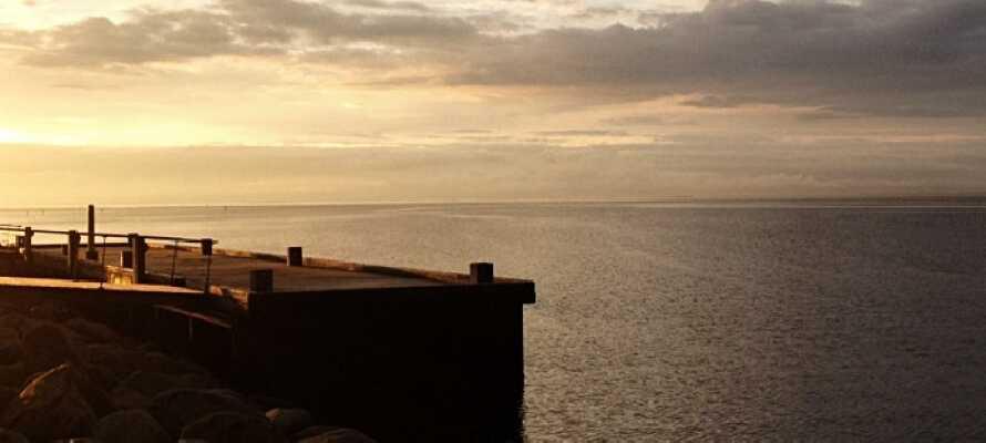 Ta en kvällspromenad och njut av den fantastiska solnedgången över havet från hamnen.