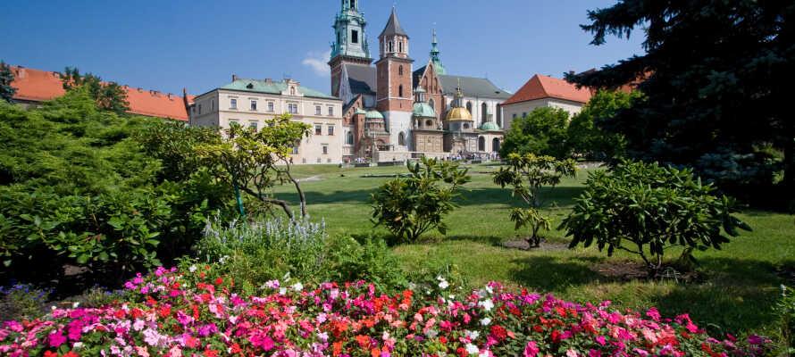 In Krakau finden Sie viele Sehenswürdigkeiten, hier sind schöne Architektur und Natur zu Hause.