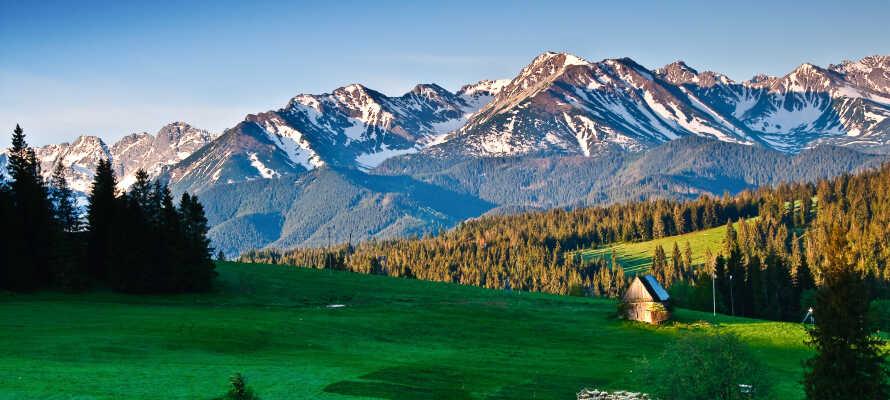 Oplev de mægtige Tatra-bjergene et par timer fra Krakow.