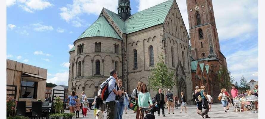 En lille køretur fra hotellet finder I Ribe, der med den flotte Domkirke har en helt speciel charme.