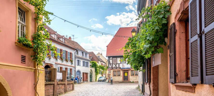 Das Hotel genießt eine zentrale Lage im charmanten Weindorf Neustadt an der Weinstraße.