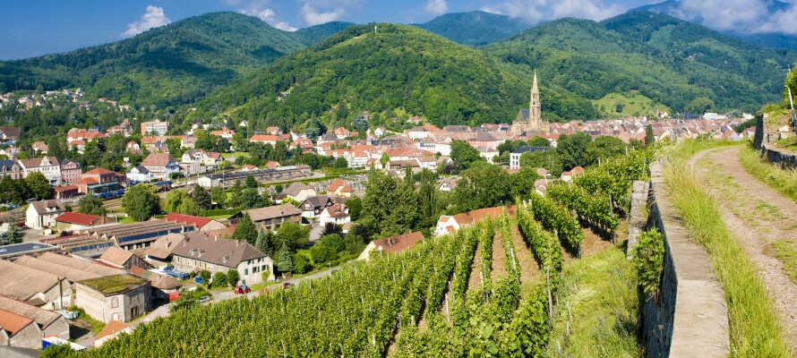 Besøk også Alsace i Frankrike, bare en halvtime med bil fra hotellet.