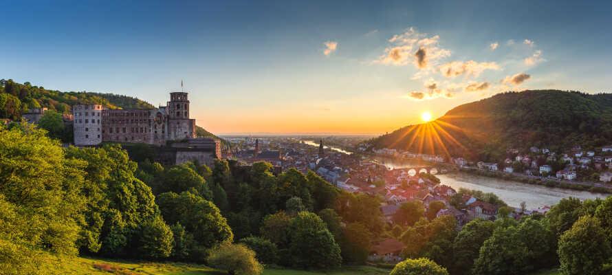 Fra hotellet har I kort afstand både til Rhindalen og det smukke område omkring Neckar-floden.