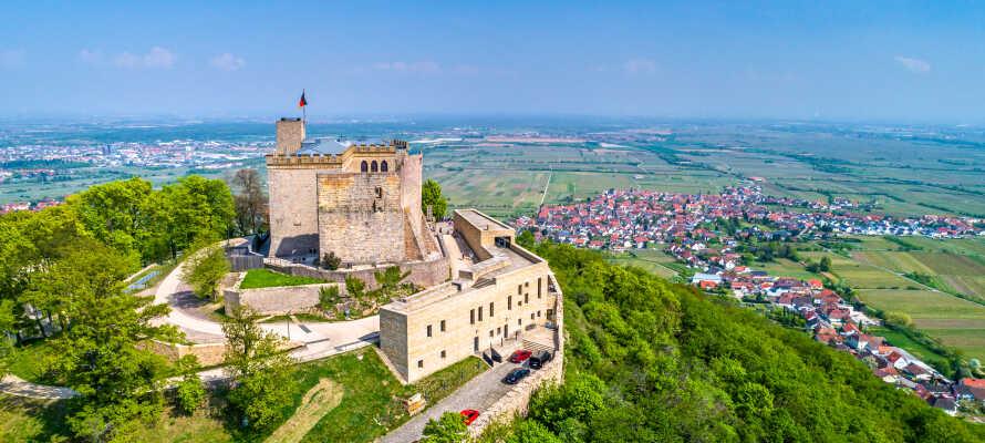 Besuchen Sie das Hambacher Schloss,  wo 1832 die deutsche Flagge als Symbol für die Freiheit und Einheit Deutschlands gehisst wurde.