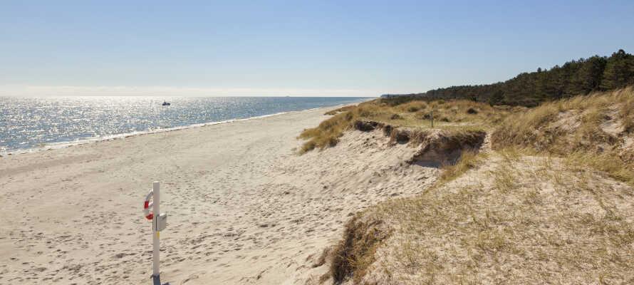 Entspannen Sie am Wasser entlang der feinen und ruhigen Küste Djurslands.