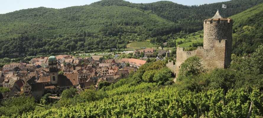Hotellet ligger nära den populära vinrutten i Alsace, som tar er genom charmiga vinbyar och härlig natur.
