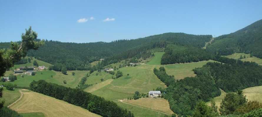 Området omkring Bonhomme er præget af smuk natur fyldt med vinmarker og charmerende traditionelle landsbyer.