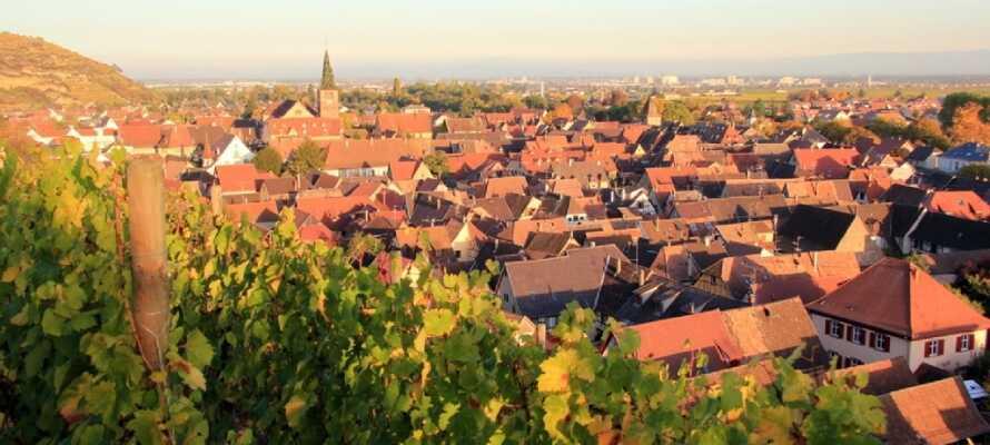 Turckheim er en lille vinby som ligger på vinruten. Gå en tur omkring byen og nyd den dejlige udsigt.