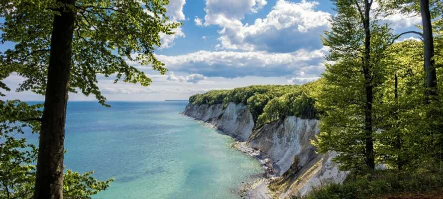 Rügen ist Deutschlands größte Insel und  bietet neben Badespaß auch einige wirklich beeindruckende Naturerlebnisse.