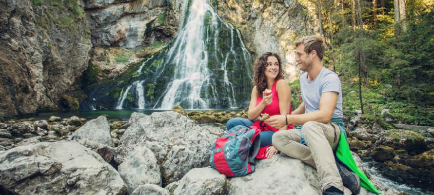 Erleben Sie den schönen Gollinger Wasserfall mit einer Fallhöhe von 75 Metern im Tal.