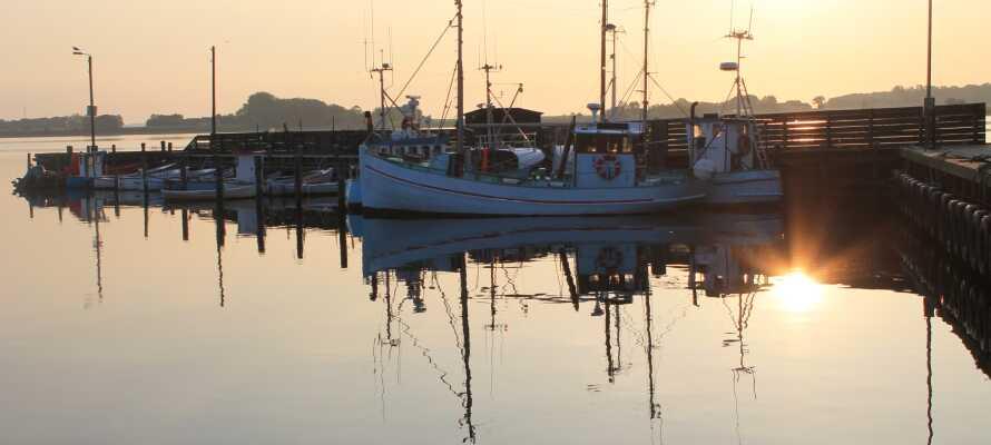Ved Juelsminde havn findes mange spisesteder, hvor I kan nyde en god frokost og den livlige atmosfære.