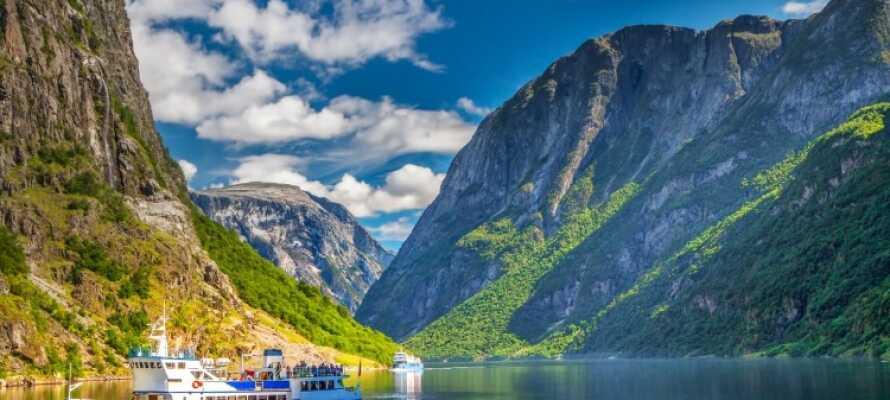 Det er mange gode utfluktsmål i nærheten av hotellet, blant annet en tur til Nærøyfjorden, som er oppført på UNESCOs verdensarvliste