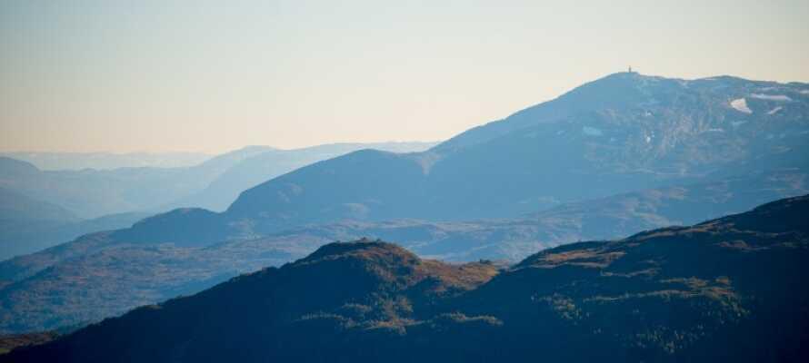 Utforsk landskapene i Myrkdalen rett utenfor hotelldøra.